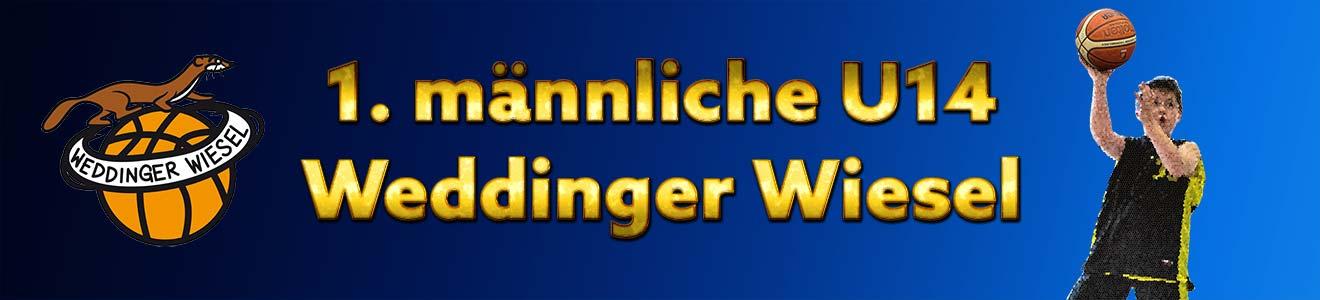 mu14 LLB – Weddinger Wiesel 1 mix vs BBC 90 Köpenick 1 (Basketball)