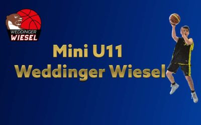 Mini U11 A – Weddinger Wiesel vs BBC 90 Köpenick (Basketball)