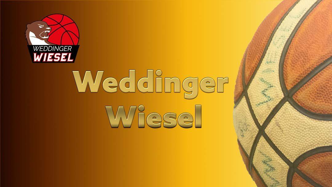 Basketball-Saison 2018-2019 – Platzierungen der Weddinger Wiesel