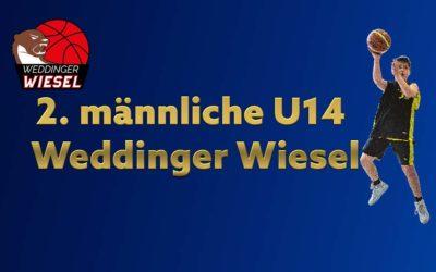 mu14 Bezirksliga B – VfB Hermsdorf 3 vs Weddinger Wiesel 2 (Basketball)