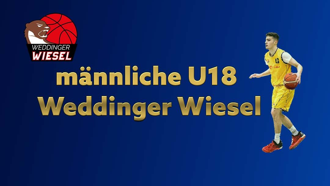 mU18 Bezirksliga – Weddinger Wiesel 1 vs VfB Hermsdorf 2 (Basketball)