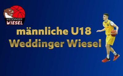 mU18 Bezirksliga – Weddinger Wiesel 1 vs VfB Hermsdorf 2 (Basketball)