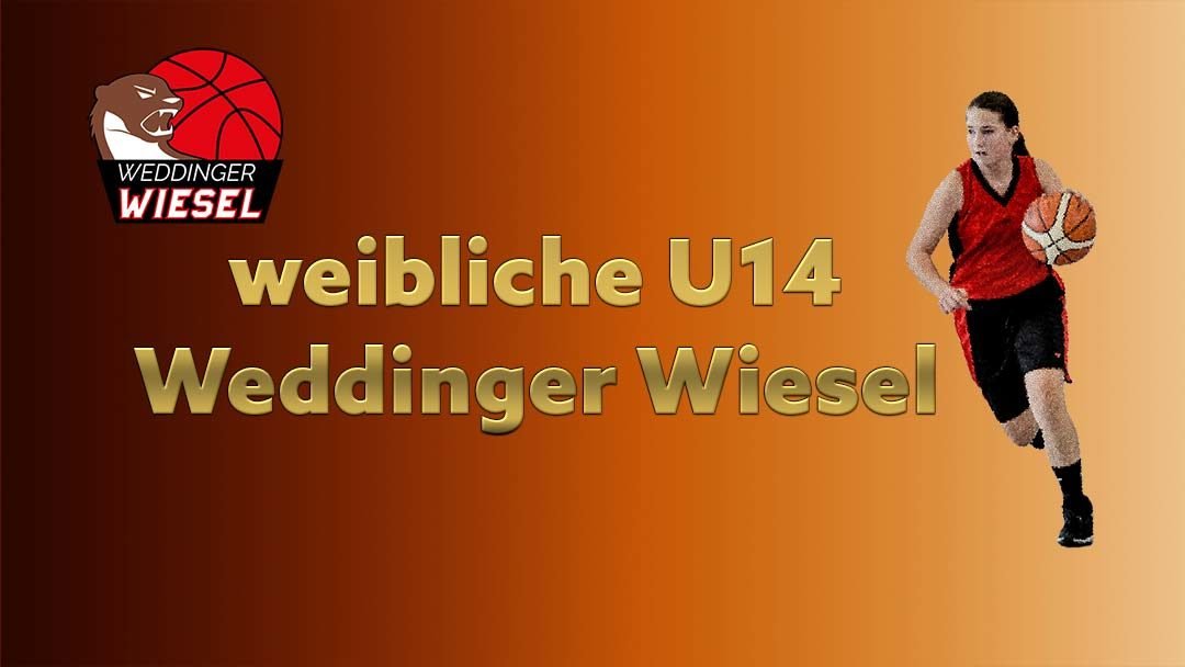 wU14 OL – Weddinger Wiesel 1 vs TSC Spandau 1 (Basketball)