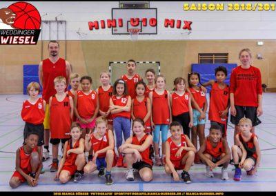 Team Mini U10 Weddinger Wiesel - Saison 2018-2019