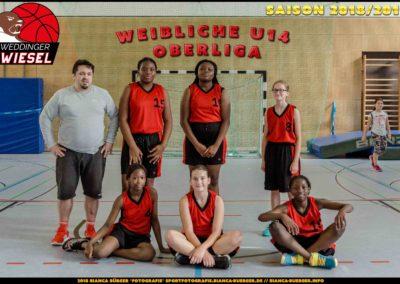 Team wU14-OL - Weddinger Wiesel 1
