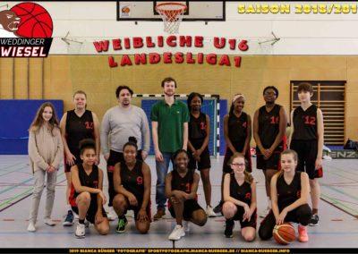 Team 1. wU16 Weddinger Wiesel - Saison 2018-2019