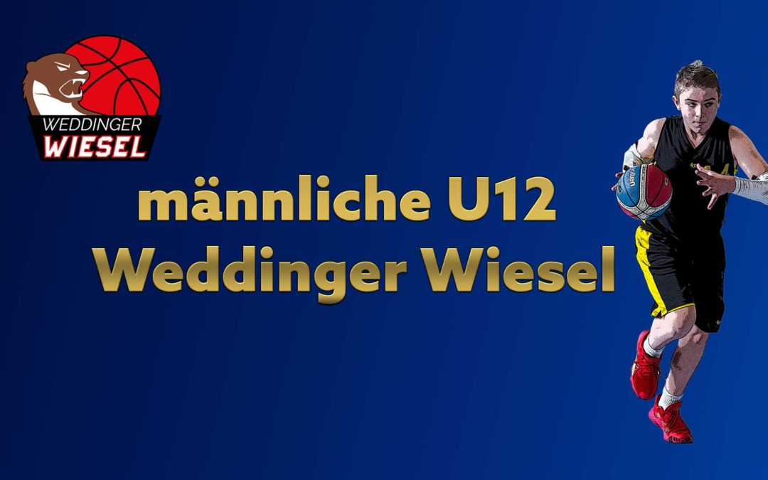 mU12 Landesliga B – Weddinger Wiesel 1 vs BG Zehlendorf 3 (Basketball)