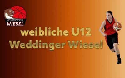 wU12 LLA – Weddinger Wiesel 1 vs BB Allianz Süd Südwest 2 (Basketball)