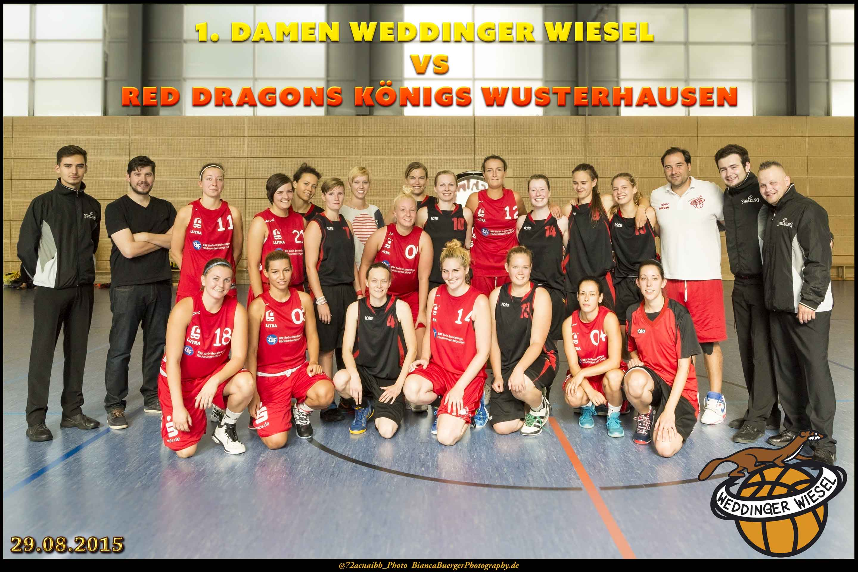 Testspiel - 1. Damen Weddinger Wiesel vs Red Dragons Königs Wusterhausen