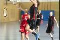 Testspiel - 1. Damen Weddinger Wiesel vs Red Dragons Königs Wusterhausen