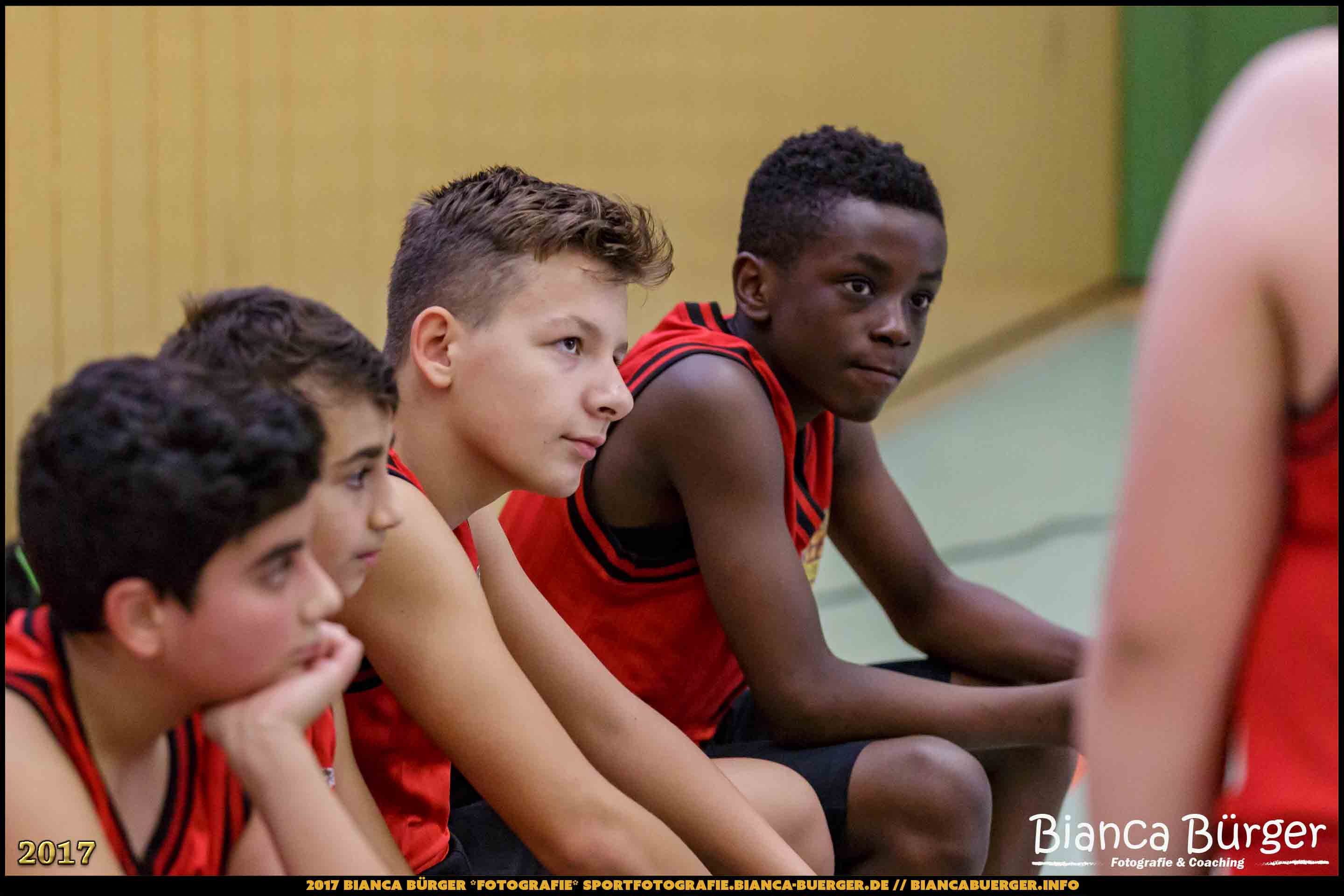 BZB mU14 - Weddinger Wiesel 2 vs DBV Charlottenburg 3 (Basketball)