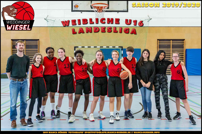 Team 1. wU16 Weddinger Wiesel - Saison 2019-2020